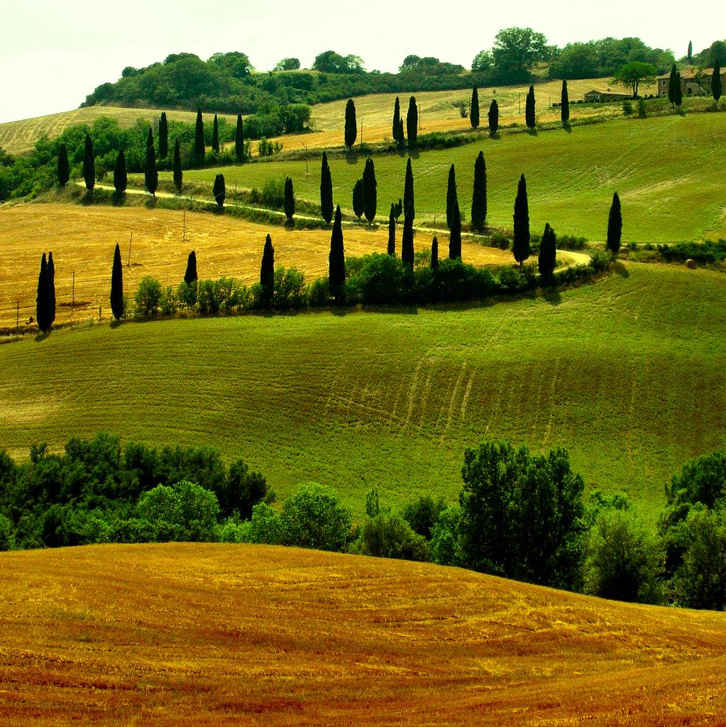 photo credit: Giampaolo Macorig via photopin cc