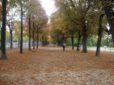 Walk to Champs-Élysées from Hotel Balmoral Paris