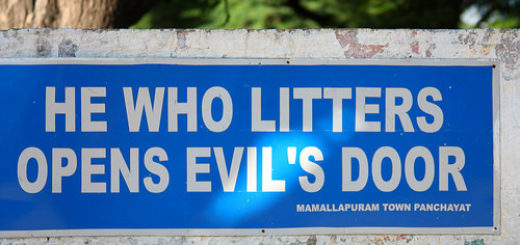 Rightly said - great indian litterbug