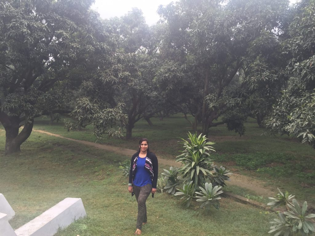 Walk in the Mango orchard at Fort Unchagaon